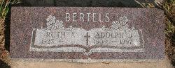 Adolph J Bertels