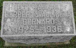 Hubert Bernard