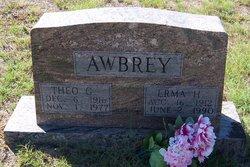 Theo G. Awbrey