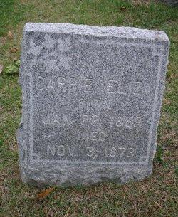 Carrie Eliza Aplin