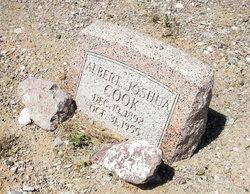 Albert Joshua Cook
