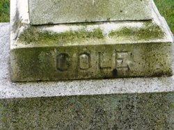 Arethusa <i>Cole</i> Bigelow