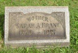 Sarah Ann <i>McLane</i> Brant