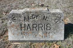 Algy N. Harris
