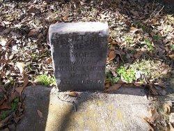 Harriet Chestnut Elmore