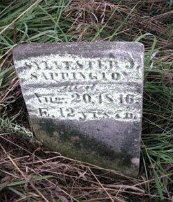 Sylvester J. Sappington