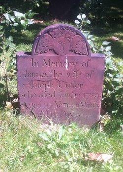 Abigail Cutler