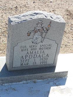 Amalia Apodaca