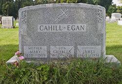 Mary <i>O'Halloran</i> Cahill