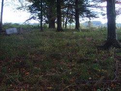 Bolt Cemetery (SR 58)