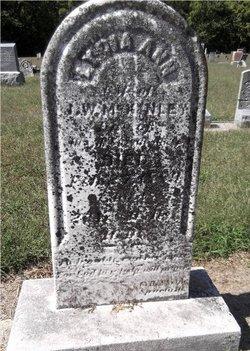 Lydia Ann <i>Aitken</i> McKinley