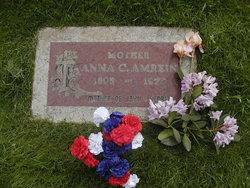 Anna Carol Amrein