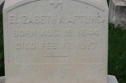 Elizabeth A Aftung