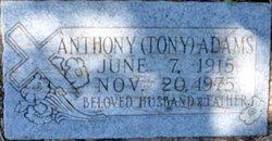 Anthony Tony Adams