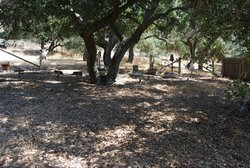 Ontiveros Cemetery