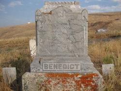 Hiram Edward Benedict
