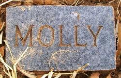 Mary Catherine Molly <i>Faulk</i> Bernethy