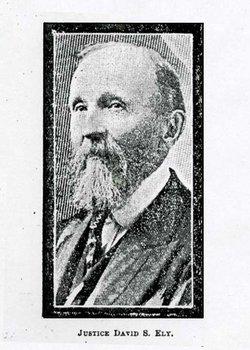 Judge David Skinner Ely