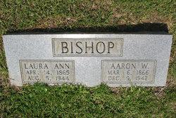 Aaron W Bishop