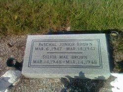 Paschal Junior Brown