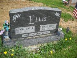 Irvin Lewis Ellis
