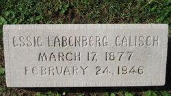 Essie Labenberg <i>Straus</i> Calisch