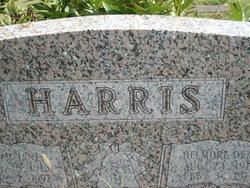 Ruth Jane <i>Slagle</i> Harris