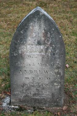 Sarah A Andrews