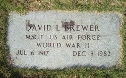 MSGT David L Brewer