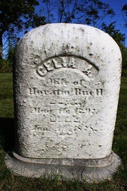 Celia Ann <i>Merrill</i> Buell