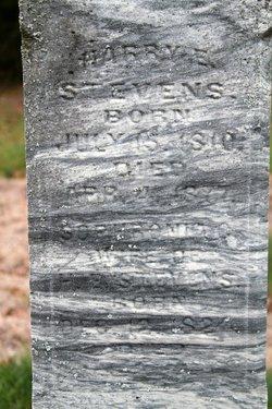 Harry E. Stevens
