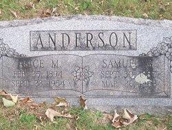 Alice M. Anderson