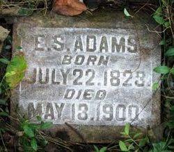 E. S. Adams
