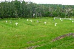 Grosse Ile Cemetery
