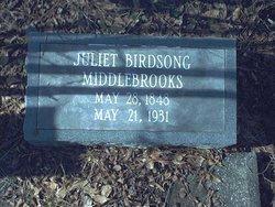 Juliet Andrews <i>Birdsong</i> Middlebrooks