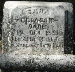 Sara Eliason