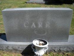 Annie <i>Hogan</i> Carr