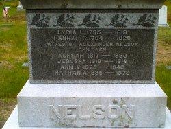 Ann V. Nelson