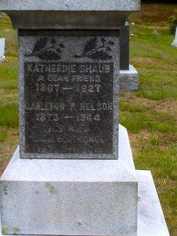 Jane Elizabeth <i>Stronge</i> Nelson