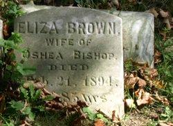Eliza <i>Brown</i> Bishop