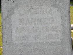 Lucenia <i>Hendrix</i> Barnes