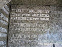 David G. Baldwin