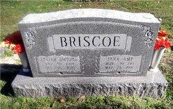 Lester Dwight Briscoe