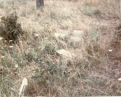 Akey Cemetery (Defunct)