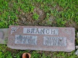 Melvin J Branch