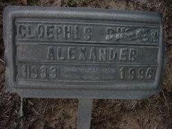 Cloephis Buster Alexander