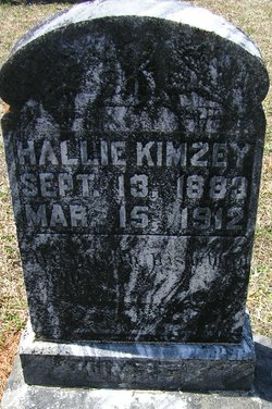 Sarah Harriett Hallie Kimzey
