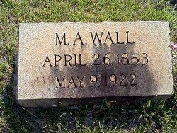 Mary Ann <i>Patrick</i> Wall