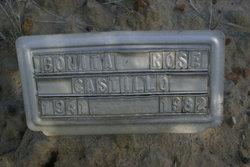 Bonita Rose Castillo