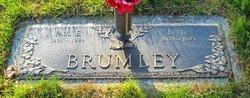 Paul E Brumley